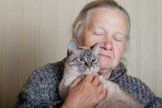 An elderly woman pets a gray long-haired cat close to her